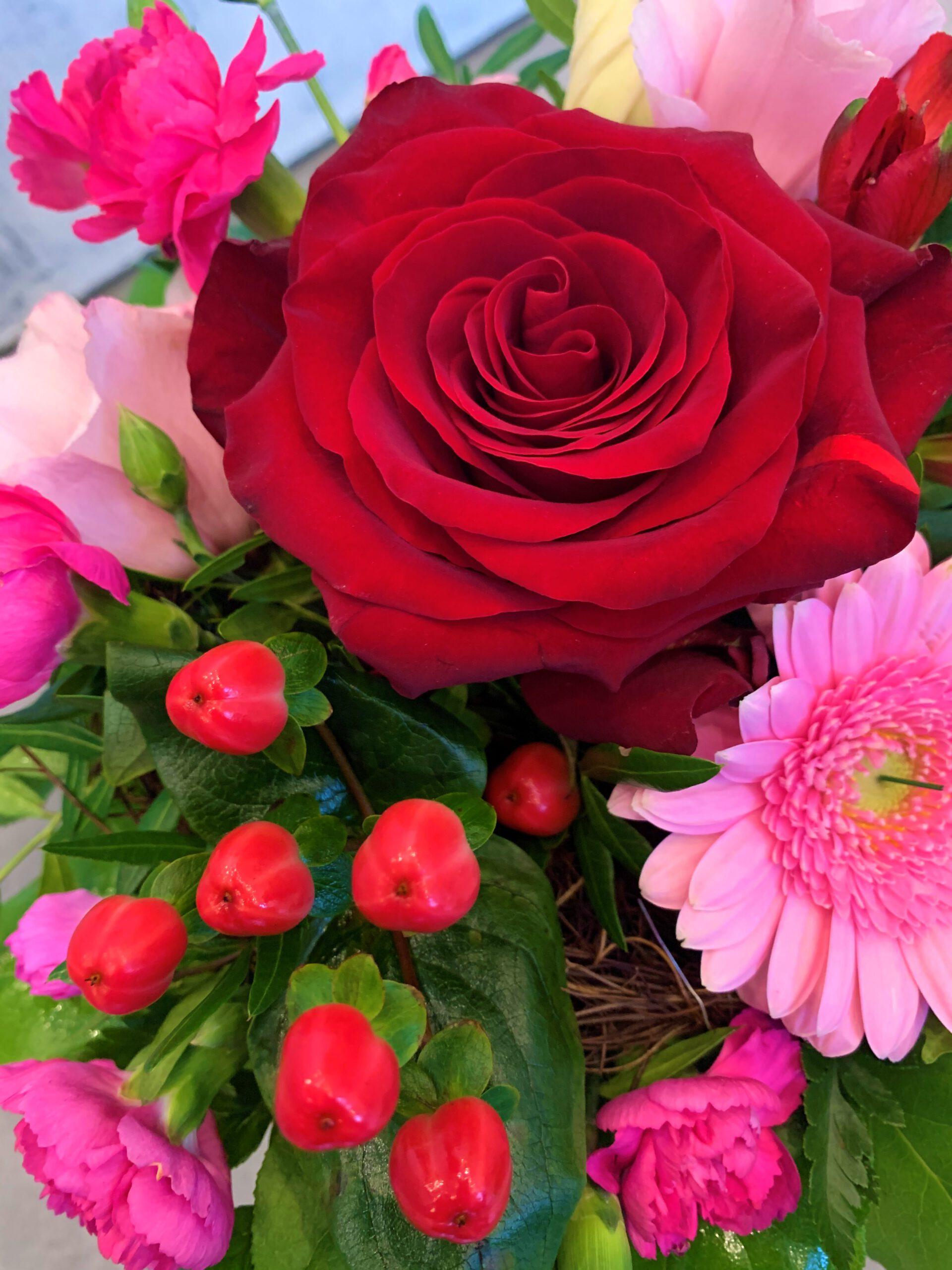 Blumenshake S-2.jpg
